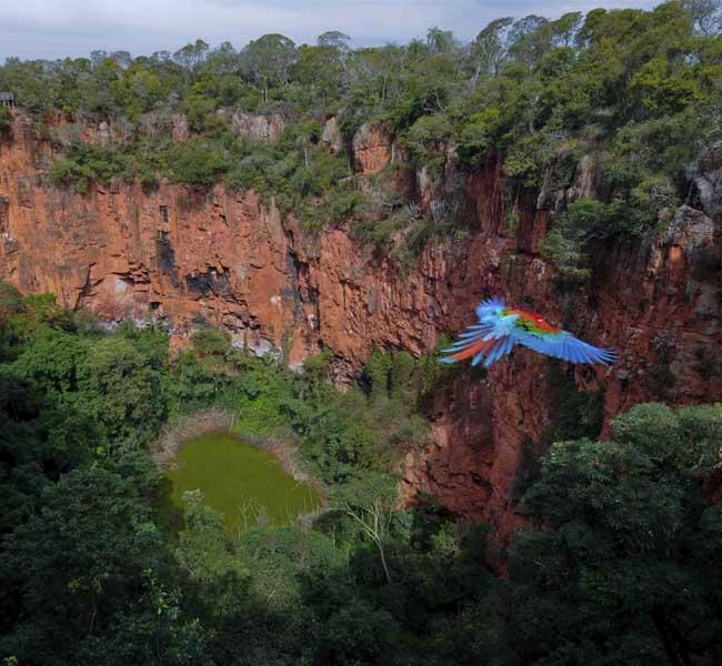 Buraco das Araras – Vista aérea do Buraco das Araras com arara voando Bonito MS Brasil Bonito Incomparável