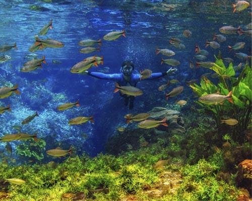 Nascente Azul - Espelhamento Flutuação Bonito MS Brasil Bonito Incomparável Fotógrafo Marcio Cabral