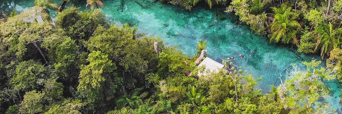 Nascente Azul - Flutuação no Rio Bonito da Nascente Azul Bonito MS Brasil Bonito Incomparável