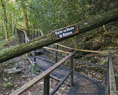 Parque das Cachoeiras - Curve-se diante da natureza Bonito MS Bonito Incomparável
