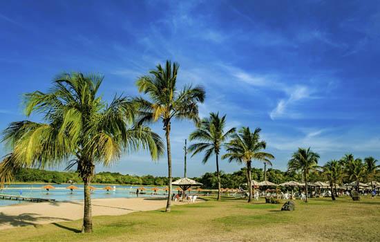 Praia da Figueira - Coqueiros na Praia de 60 mil metros quadrados Bonito MS Bonito Incomparável