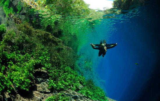 Passeio Lagoa Misteriosa - Mergulho em uma lagoa cristalina Bonito MS